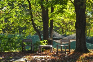 Guest Blog: Best Place for Fall Photos 1