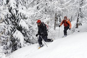 Ski Catamount Trail - the Length of Vermont