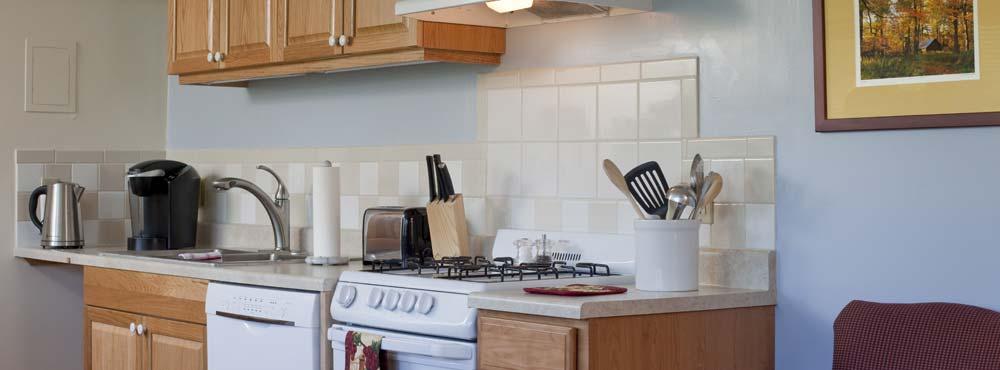 Logan Suite Kitchen counter