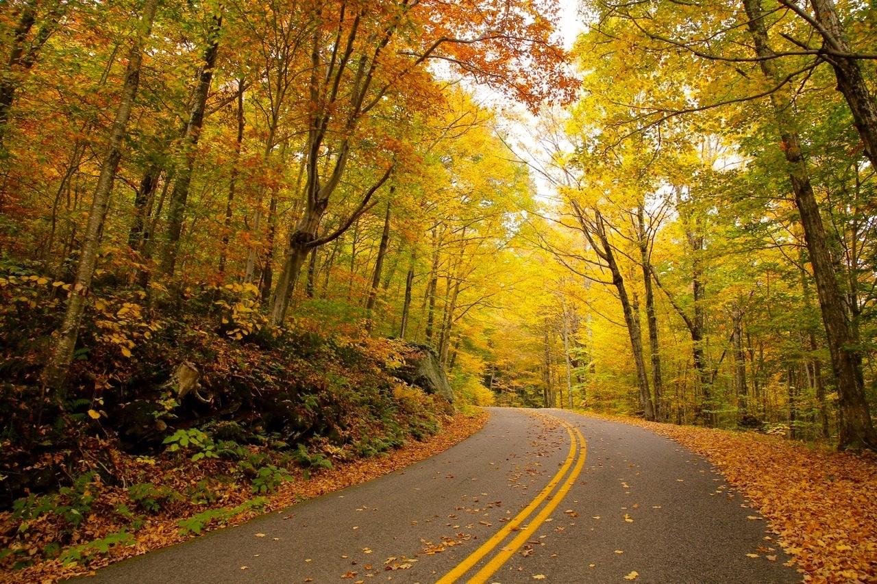 Vermont Fall Foliage Getaway